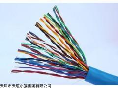 DJYP3YP3-3×2×0.75㎜²对绞式屏蔽计算机电缆