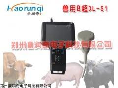 便携式猪用B超测孕仪多少钱,进口猪用B超价格