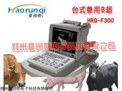 动物B超探头,动物B超探头维修方法和厂家