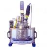 实验室均质乳化系统反应器Reactor-5L 易操作