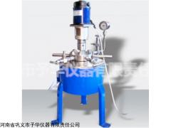 设计精巧CJF小型高压反应釜 坚固耐用