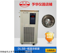DLSB低溫冷卻液循環泵圖片,低溫泵廠家,制冷泵技術參數