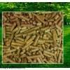 高精度锯末木屑稻壳生物质颗粒热值大卡检测仪器操作视频
