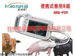 HRQ-P09动物B超,触摸屏兽用B超多少钱