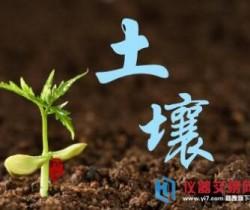 土壤污染防治法有望尽快出台