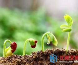 土壤污染治理法有望出台相关政策