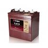 邱健蓄电池T-875电瓶美国进口蓄电池适用于club car