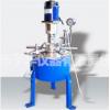 实验室常用小型高压反应釜CJF