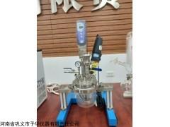 实验室均质乳化系统反应器,体积小,噪音低,使用寿命长