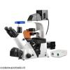 奥特BDS500倒置荧光显微镜