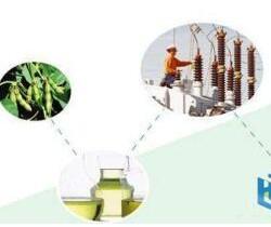 """""""植物绝缘油变压器环保性能评估""""项目过验收"""