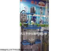 YHGSF-20双层玻璃反应釜