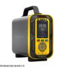 管道可燃气体、氢气、甲烷检测仪,管道多气体烟气分析仪