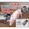 猪牛用背膘厚度测定仪哪家便宜价格多少钱