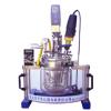 Reactor-5L 实验室均质乳化系统反应器
