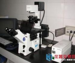 生物学领域快速发展 荧光显微镜市场被看好