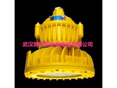 BLD190-20WLED防爆照明灯,IP65,WF2