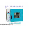 北京DHG-9030A电热鼓风干燥箱