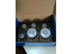 溴化乙啶細胞染色法端粒酶活性TRAP電泳分析試劑盒