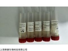 MX4614-250UG Coelenterazine hcp 腔肠素hcp