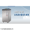 LDZF-30L-II 立式高压蒸汽灭菌器