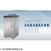 LDZF-75L-II 立式高压蒸汽灭菌器