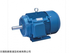 YE2-225M-6-30KW,YE2-250M-6-37KW, 高效三相异步电动机
