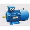 YEJ2-90S-2-1.5KW,YEJ2-90L-2-2.2KW, 三相异步电机