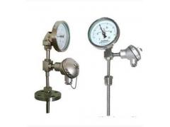 WSS-411 带热电偶/热电阻双金属温度计
