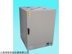 BPG-9100AH 上海培因高温干燥箱BPG-9100AH
