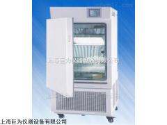 JW-YP-500 长春稳定性试验箱