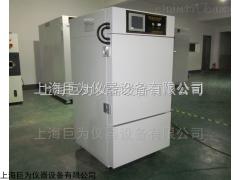 JW-YPWDX-250GS 辽宁药品稳定性试验箱