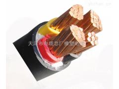 铠装VV22电力电缆4*25+1*16