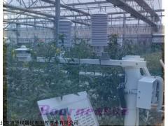 BN-WSQX617 温室小气候监测站