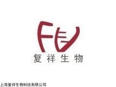 BEL/FU 人肝癌氟尿嘧啶耐药株