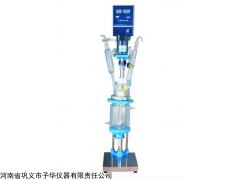單雙層玻璃反應釜YSF-1L、2L、3L