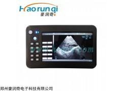 HRQ-5100AV 山东寿光养猪场兽用B超