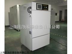 JW-YPWDX-120GS 上海150L药品稳定性试验箱