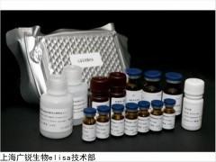 小鼠Ⅰ型胶原N末端肽(NTX)试剂盒原理