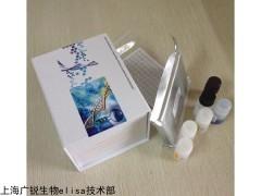 大鼠免疫球蛋白A(IgA)试剂盒原理