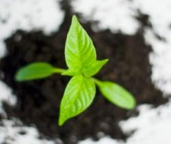 土壤监测仪器仪表将迎巨大需求,因首部土壤污染防治法出台