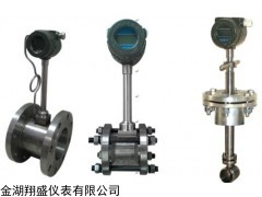 XS-LUGB 插入式蒸汽计量表
