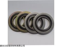DN32 金属缠绕垫