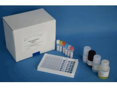 48T/96t 大鼠磷酸化细胞外信号调节激酶ELISA试剂盒