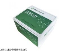 人甲殼質酶蛋白40ELISA試劑盒科研專用