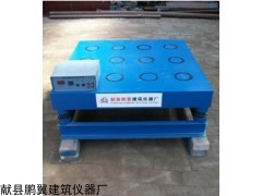 WI-1砌墙砖磁力振动台鹏翼厂