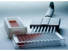ER2427 牛神经肽Y(NP-Y)试剂盒要求