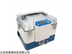 HAD-ZR-3730 污染源真空箱气袋采样器