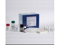 48T/96t 免疫球蛋白GFc段受体Ⅲ ELISA试剂盒