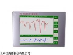 RS-RBMT 钢筋笼长度测试仪/磁法仪